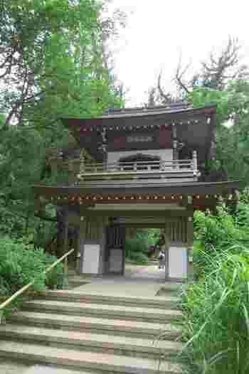 東慶寺の隣にある「浄智寺」は木々に囲まれ、裏山には江ノ島七福神の一つ「布袋の石像」をまつる洞窟もある自然豊かな禅寺。二階建ての鐘楼門とよばれる珍しい山門が特徴的です。