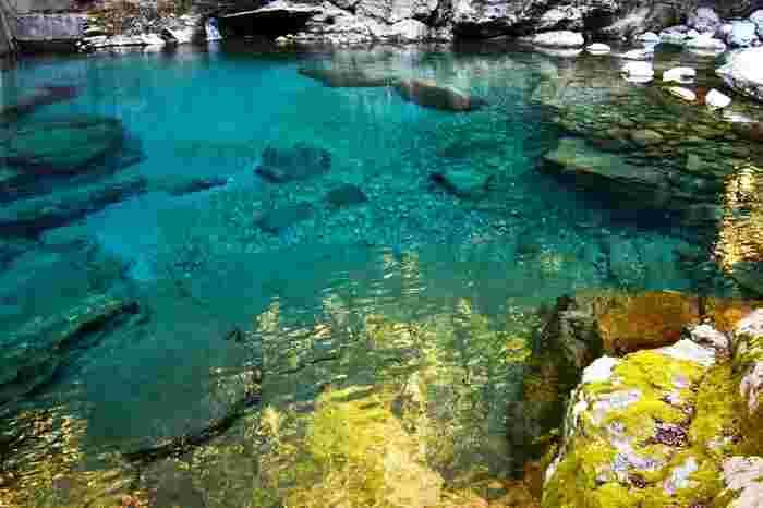 鮮やかなコバルトブルーの水の色は「仁淀ブルー」と呼ばれています。引き込まれそうな透明度で、高知県に来たら「仁淀川」を目当てにやってくる観光客も多いそうです。