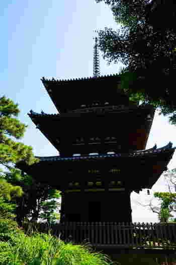 建築ミュージアムとしても知られる三渓園は、三重塔をはじめ国の重要文化財に指定されている建造物も有名です。美しい庭園と調和するように配置された貴重な歴史的建造物は一見の価値あり!
