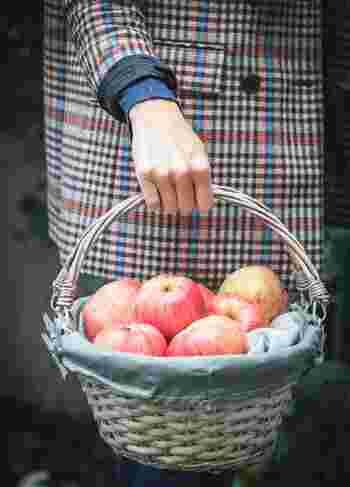 一口に「アップルパイ」と言っても、今回ご紹介したように、作り方やアレンジ方法は数えきれないほど・・・!  夜が長くなるこの時期、旬のりんごを愛でながら、お気に入りのレシピをみつけてみてはいかがですか?
