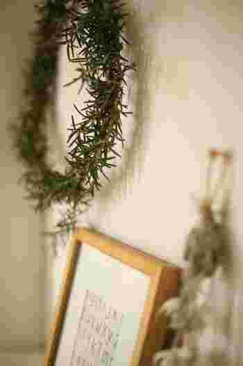 乾燥させたローズマリーを玄関先やクローゼットの中に飾っておけば、除菌や消臭に役立ちます。束にしてリースにするのも可愛らしいですね。