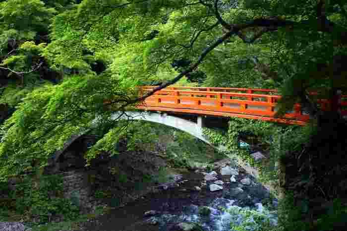 【槇尾「指月橋」と清滝川】