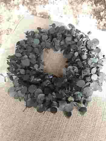 丸っこい葉が特徴的なユーカリは、簡単に束ねるだけで絵になるドライリースの定番です。丸葉のユーカリにもさまざまな種類があるので、お気に入りの葉の形で作ってみては?