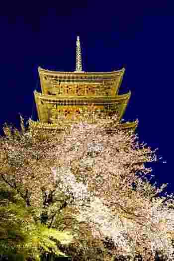京都のお花見スポットを地域別にご紹介しました。いかがでしたでしょうか。今回の記事を参考に、事前に行く場所を調べて、いくつかのスポットをコースで回って楽しんでみてはいかがでしょうか♪  ※この記事の情報は公開日時点のものです。最新の情報はHP等でお調べのうえ、お出かけください。