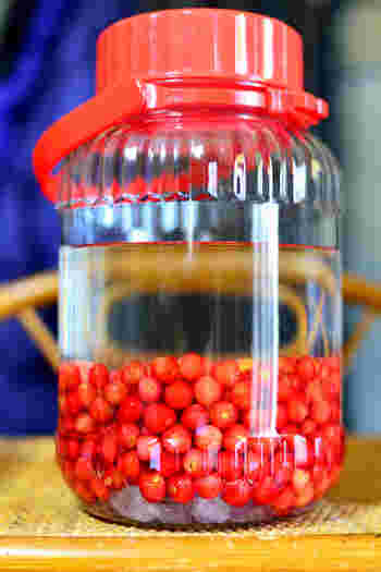 透明のガラス容器の中で果実がじっくりと熟成していく過程をみるのも楽しみです♡