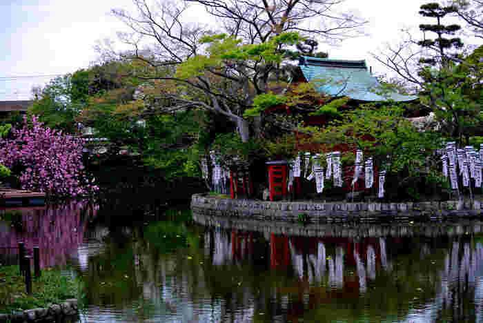 鶴岡八幡宮境内・源氏池に浮かぶ島に建てられている「旗上弁財天社」。源頼朝が旗上げをし、七福神「弁財天」からお告げを授かった地とされています。