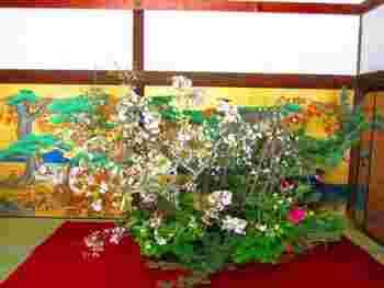 平安初期、嵯峨天皇が大沢池の「菊が島」に咲く菊を手折って、殿上の花瓶に活けたのが発祥と伝わります。大覚寺では、毎年春になると、いけばな嵯峨御流最大の祭典「嵯峨天皇奉献 華道祭」が行われています。大覚寺は桜の名所でもあります。