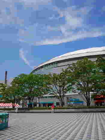 東京ドームがシンボル的存在の水道橋エリア。スポーツ観戦やコンサート、隣接のアミューズメントエリアへ遊びに訪れたことがあるという人も多いのではないでしょうか。また、水道橋駅・後楽園駅・春日駅・本郷三丁目駅など、徒歩圏内でいろんな沿線を利用できるので、たくさんの人が集います。 そんな人通りの多い街には、おしゃれなカフェや珍しいお料理をいただける魅力的なお店もたくさんあるんです!今回は、水道橋エリア周辺でおすすめのカフェやお店をご紹介します。ランチや、一息つきたいとき、そしてイベントの前に寄ってみませんか?