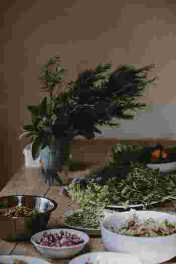 自然の恵みをいただこう!植物の優しさをブレンドする「ハーブのある暮らし」