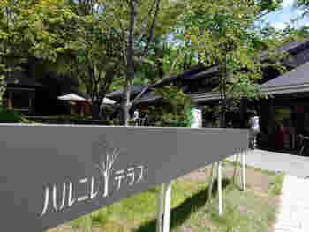 星野エリアはあの憧れの旅館「星のや 軽井沢」の周辺に広がるエコモダンな温泉街です。