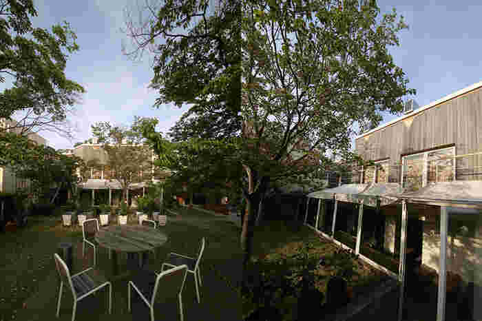 四季の移ろいが感じられる中庭のテラス席もあります。