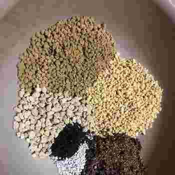 苗植えは、3月上旬~4月上旬がおすすめ。サボテンは乾燥した場所を好むため、水はけと通気性のいい土が向いています。赤玉土に腐葉土、川砂などを自分でブレンドするのもいいですし、初心者なら市販のサボテン用の培養土を利用するのも便利ですね。