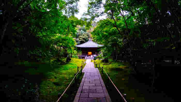 JR松島海岸駅から歩いて5分ほどのところにある「円通院」は、伊達家二代藩主、忠宗の次男である光宗の墓所です。静寂に包まれた境内は、凛とした空気が漂っています。