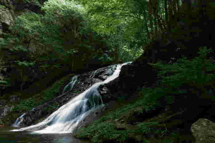 エメラルドグリーンに輝く淵、無数に点在する大小の岩、緑の苔に覆われた岩壁が織りなす横輪川沿いの渓谷には、落差27メートル、幅6メートルの済浄坊の滝があります。高原を吹き抜ける爽やかな風に吹かれ、心地よい清流のせせらぎに耳を澄ませながら深緑の渓谷を歩く気持ちよさは格別です。
