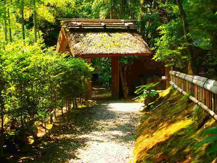 竹林の中に静かに佇む直指庵は、大覚寺よりもさらに嵯峨野奥地に位置する浄土宗の寺院です。ここは、参拝者の心を癒してくれる不思議な魅力を持つ寺院です。
