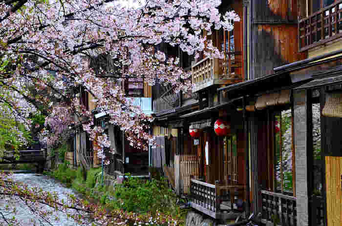 あ、ラーメン食べたい*今すぐ行きたくなる【京都・祇園】の美味しいラーメン・観光手帖