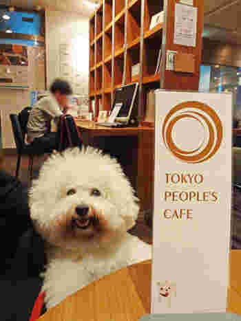 全席が犬同伴OK。店員さんは犬好きな方が多く、気さくに対応してくださるので犬連れでも気軽に利用できます。ドッグメニューもあるので、愛犬と一緒に食事してもいいですね。