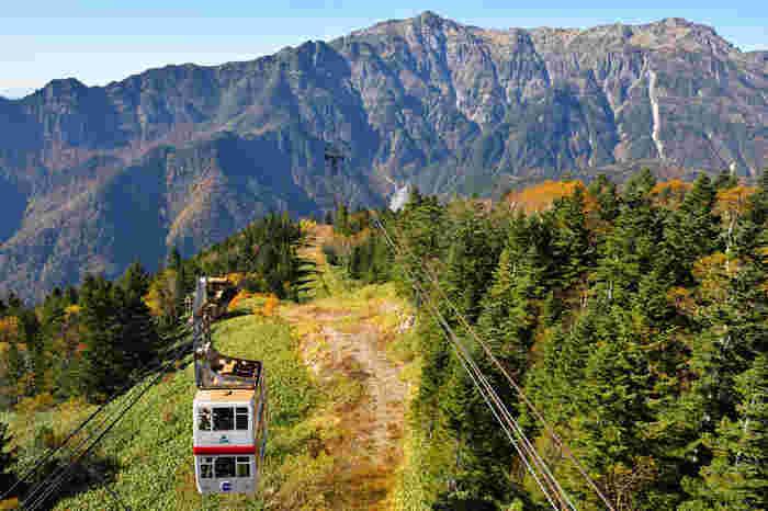 日本で唯一の2階建て「新穂高ロープウェイ」は、雲上の世界を気軽に体感できる、まさに空中散歩が楽しめるおすすめのスポット。標高2156mの雄大な自然と四季折々の絶景を是非、堪能してみてはいかがでしょう!360°の大パノラマが待つ山頂展望台では、ここでしか味わえないグルメやお土産もいっぱいです。
