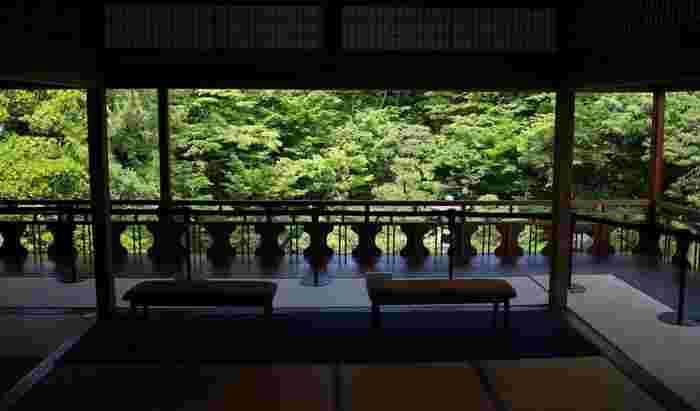 のんびり、素敵なお店を発掘しちゃおう♪「新潟・古町エリア」散策のすすめ