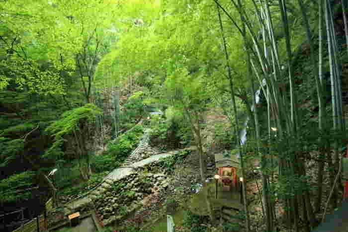 遊歩道があるので、ぜひ滝のすぐそばまで歩いてみましょう。また、滝の左側には身代わり不動尊、右側には出世大黒尊があり、出世や厄よけの祈願することもできますよ。苔むした岩や生い茂る木々など、どこか別世界にいるよう。