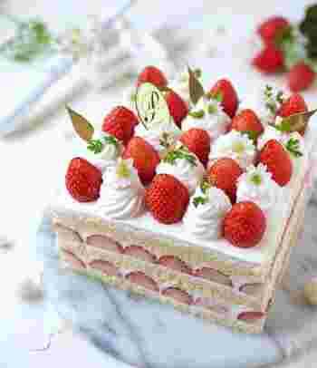 ずらりと並んだいちごの断面がなんとも可愛らしいショートケーキ。見た目から心がワクワクする春のスイーツです。
