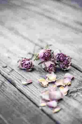 鮮やかな色合いよりも、くすんだナチュラルな色味を好む場合はハンギング法をとりましょう。バラのくすんだ色味は独特でとても素敵です。