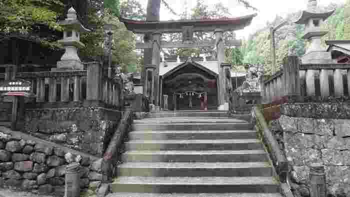 神楽が奉納される拝殿の正面などに施されている、竜や雲、瑞鳥などの彫刻も大変素晴らしく、深い歴史を感じさせます。