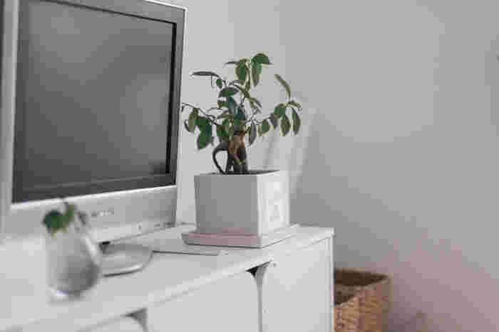 そんなミニマルスタイルは、白系のアイテムが多いところが特徴です。白系のアイテムには清潔感があり、すっきりとしたクリーンな印象を与えてくれます。ですが、白ばかりにすると、無機質になりやすいので要注意。観葉植物を置いたりオレンジ系のライトを使ったりして、いい意味で隙がある方が、落ち着ける空間になりますよ。