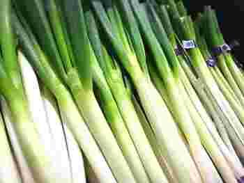 長ねぎは白い部分と葉の部分を切り分け、ラップで包んでから冷蔵庫の野菜室へ。容器などに入れ、立てかけるように置いておきましょう。