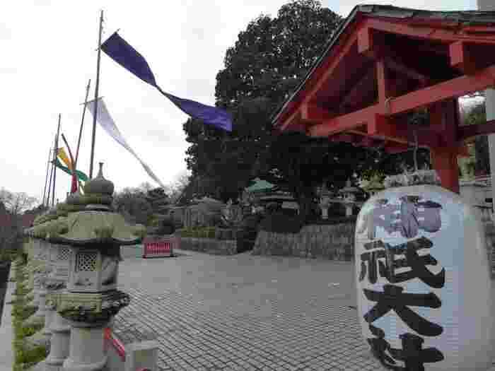 国道135号沿いにある「神祇大社」は八百万の神々が祀られている神社です。春には、境内にある八重桜やしだれ桜を楽しみながら、愛犬と一緒に参拝できます。