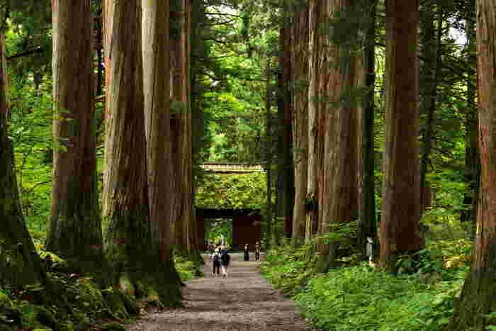 御朱印巡りに美味しいお蕎麦【長野県・戸隠神社】へ出かけよう