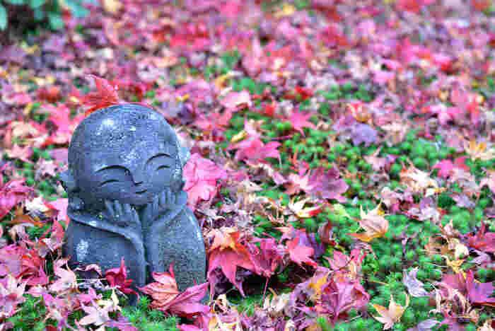圓光寺の境内にあるお地蔵さんは、愛らしい姿が人気です。圓光寺の近くには詩仙堂や曼殊院門跡など、有名な紅葉スポットが多くありますので、一緒に巡ってみましょう。