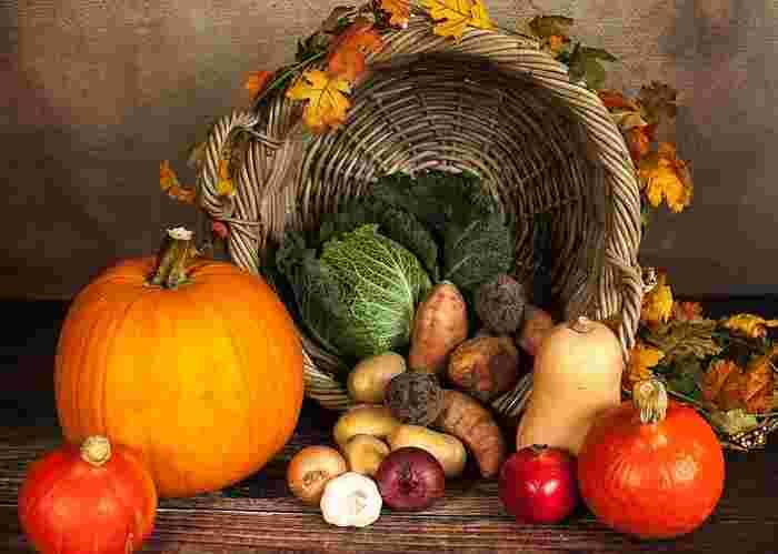 まずは体を温める野菜が何かを知っておきましょう。見分けるポイントは主に4つあります。スーパーで選ぶ時の参考にしてくださいね。