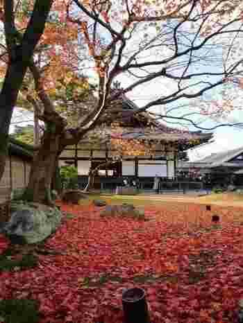 「豊臣秀吉」の正妻だった「ねね」は、秀吉の死後は尼となり、ここ「高台寺」で秀吉の菩提を弔いました。  絨毯のように散り敷いた紅葉が美しいですね。