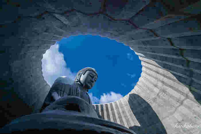 北海道最大級の霊園である「真駒内滝野霊園(まこまないたきのれいえん)」では、2016年に公開された、世界的建築家の安藤忠雄氏が設計した「頭大仏」が注目を集めています。ラベンダーの丘の中に礼拝空間が設けられ、その姿は外からは頭しか見えません。