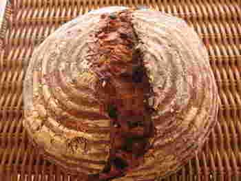 伊丹市にある「ソルシエール」はハード系のパンから、かわいい菓子パンまで常時70種類が揃っている本格パン屋さん。外はカリッとして中はモチモチのバゲットやクラムがおすすめです。