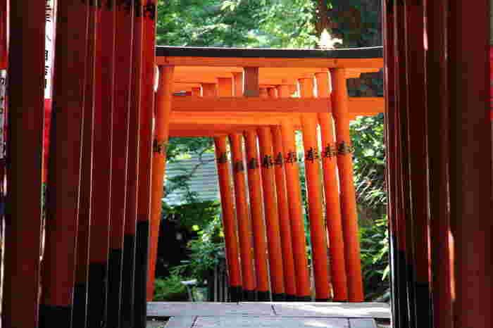 """けれども、そういったステレオタイプなイメージを裏切って、「上野」には、美術鑑賞や博物館見学といった積極的な目的をもたなくても、""""気ままに歩く""""だけでも楽しめるエリアがあります。【上野公園内「花園稲荷神社」】"""