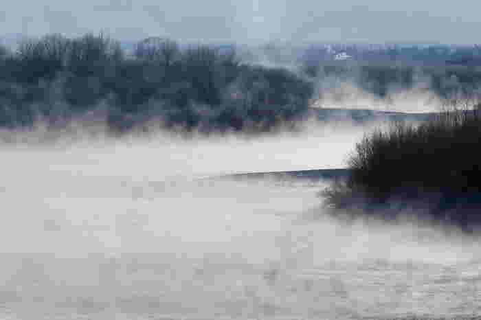 十勝川温泉の特徴といえば、何といっても「モール温泉」であること。遥か太古の時代、十勝川河畔に自生していた葦などの植物が長い時間をかけ堆積してできあがる亜炭層。その亜炭層を通って湧き出る温泉がモール温泉です。世界的にも稀少な温泉で、空気に触れると茶褐色や黒色になるのが特徴。保湿成分が豊富な美肌の湯です。  ♨ 泉質:ナトリウム塩化物・炭酸水素塩泉(弱アルカリ性低張性高温泉) ♨ 適応症:虚弱体質、慢性婦人病、冷え性など (美肌効果)
