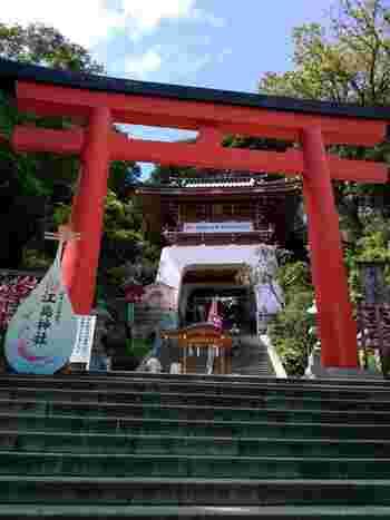 藤沢市江ノ島にある江島神社は、日本三大弁財天が祀られています。弁財天は、三姉妹の女神様です。縁結びはもちろんのこと、芸道上達や商売繁盛のご利益もあるため、芸能人の方も多く訪れています。