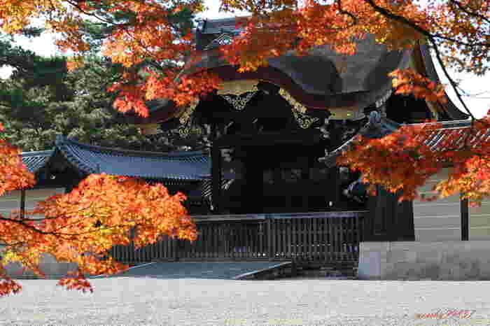 京都御苑は敷地がとても広く、砂利道なので歩きやすい靴で行きましょう。たくさんの木々に囲まれていて、あまり混雑していないので、ゆっくりと紅葉を楽しむことができます。