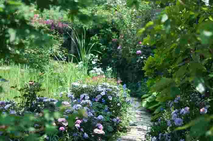 緑あふれる自然を求めて出かけてみましょう。太陽の光や風を肌に受けて、全身で自然を感じてみて。緑や花に彩られた美しいガーデンをのんびり散策すれば、生き生きとした緑と風が優しく包んでくれて、可憐な花たちが微笑みかけてくれるかのようです。