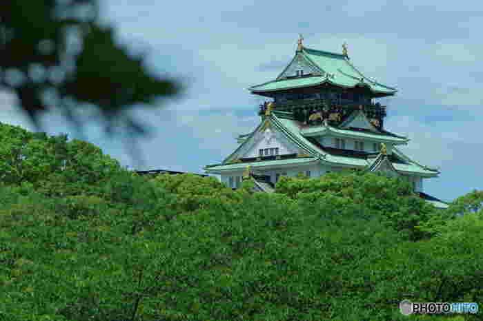夏になると大阪城公園は、緑に包まれます。緑豊かな公園内は特に目的がなくても散策にぴったりで、森林浴をしているような気分を味わうことができます。
