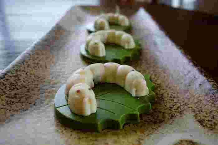 蚕をかたどった、ちょっとリアルな見た目にたじろいでしまうチョコレート「かいこの王国」。古くから養蚕業のさかんな富岡市ならではのお土産です。