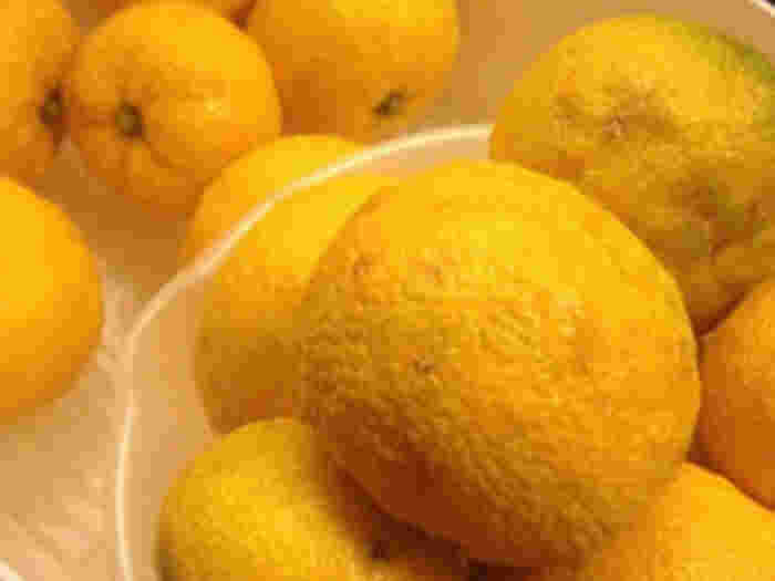 塩ゆずのドレッシングは、柿やみかんなどを加えるなどして、フルーティーでおしゃれな味にもアレンジできます。和でも洋でも合うドレッシングのレシピはこちらから。