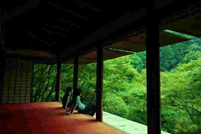 【「栂尾山 高山寺」の国宝「石水院」】