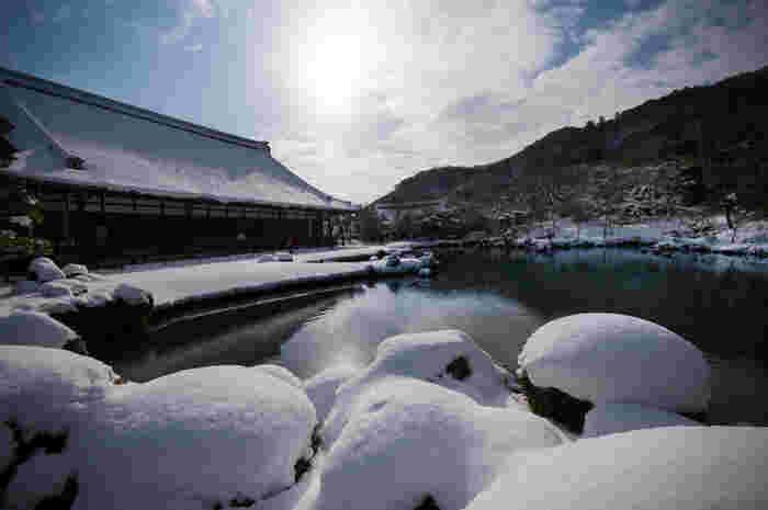 京都嵐山にあり格式高い禅寺「天龍寺」。度重なる火災に見舞われたため何度も再建を繰り返していますが、嵐山を背景に大きく広がる池の庭園が有名です。その中には大きく立派な鯉お優雅に泳いでいます。