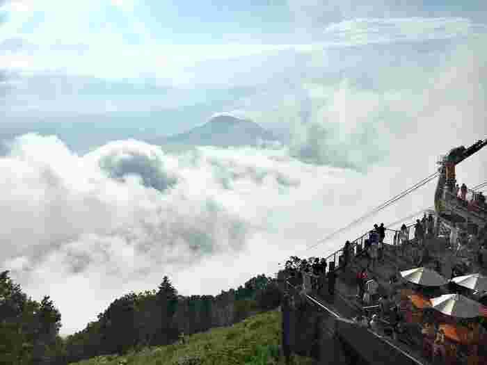 一面に広がる雲の海。この雲の下はどんよりしているはずなのに、ソラテラスは快晴。とっても不思議な感覚を楽しめます。