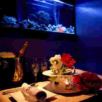店内には、様々なタイプの個室が用意されています。ここでは、色とりどりの熱帯魚たちが泳ぐ幻想的な空間でお食事をいただくという贅沢なひとときを過ごすことができます。