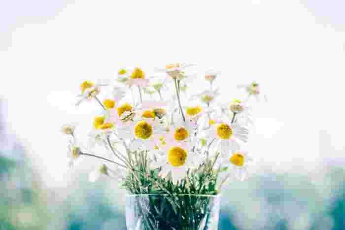 小さな幸せでも、ポジティブな出来事を記録する習慣を作ることで、日常のささいな喜びにも気づきやすくなることができます。1日1つ、1週間に一度でもいいので、自分の中で続けやすいノルマを決めて記録してみましょう。