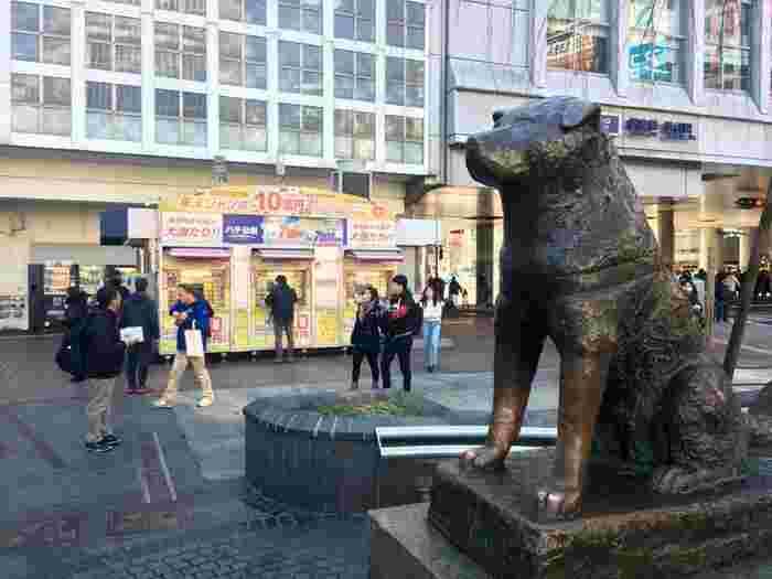 亡くなった飼い主の帰りをひたすら待ち続けたという切ない実話で知られる「忠犬ハチ公」。その姿をかたどったハチ公像は、JR渋谷駅ハチ公口のすぐ目の前にあります。言わずと知れた定番の待ち合わせスポットです。